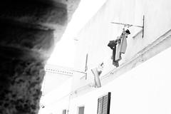 Bring me sun (lorenzoviolone) Tags: agfa scala 200 bw black white building d5200 dslr monochrome nikon reflex vsco vscofilm clothes drying laundry day neighborhood outdoor streetphoto streetphotobw streetphotography travel:sardinia=mayjune17 wires agfascala200 blackwhite blackandwhite nikond5200 dryingclothes laundryday santantioco sardegna italy fav10