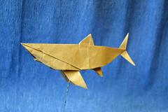 Shark - 陈晓 (Egor Prokhorenko) Tags: origami paper art shark craft tissue lokta crease pleats pattern