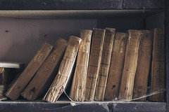 (matdur69) Tags: matdur matdur69 book decay abandoned