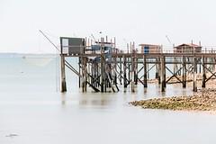 les cabanes à carrelet #1 (thierry.T) Tags: angoulins16 mer poselongue pêche carrelet cabane poitou atlantique