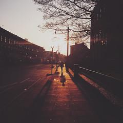 Commute (Olly Denton) Tags: sun shadow tree silhouette light perspective vanishingpoints street road streetphotography morning architecture architecturelovers architecturephotography architecturalphotography iphone iphone6 6 vsco vscocam vscolondon vscouk ios apple mac shotoniphone shepherdsbush lbhf london uk