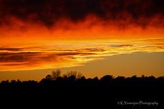 The sky is on fire. (K.Yemenjian Photography) Tags: sun sunlight sunset redsky orangesky cloudy clouds landscape trees silhouette fire evansga georgia georgiausa skyline cityscape canont5i canon canon700d