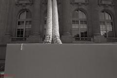 Renovation work, Grand Palais. (Kent Johnson) Tags: renovation grandpalais cloth shape 1600logoadjsef5225 fujifilmxpro1 xf18mmf2r paris construction blackwhite urbex travel architecture form personalwork