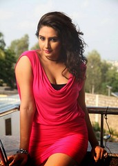 Indian Actress Ragini Dwivedi Images Set-1 (31)