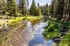 Firehole River Overlook (astrofan80) Tags: bäume fireholeriver landschaft nationalpark rundreise usa uppergeyserbasin yellowstone fluss wyoming yellowstonenationalpark us