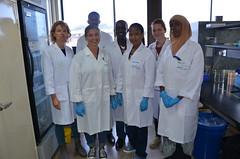 MoreMilk project: Laboratory training on milk hygiene and safety (International Livestock Research Institute) Tags: ilri dairying capacitydevelopment foodsafety