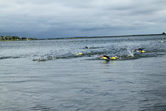 "I Mityng Triathlonowy - Nowe Warpno 2017 (184) • <a style=""font-size:0.8em;"" href=""http://www.flickr.com/photos/158188424@N04/36722574761/"" target=""_blank"">View on Flickr</a>"