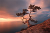 1699566-f (iconnn) Tags: crimea rock mountains tree sea one cloudsky crot majestic sunset valley artcultureandentertainment ontheedge beauty beautyinnature blacksea carpathianmountainrange city rocks coloroftheimage colors contrasts dawn environment extremelandscapes fog forest high hill horizon horizonabovetheearth horizontal lighting backlight irritation earth landscape solitude morning mountainpeak multicolored naturalparks nature nohumans attheupperpart outdoors panoramic photos sosnew pine pineforest plateau residentialarea rockobject ruralscenes picturesqueplacesnature season silhouette oneobject sky springsummercollection stonematerial strength summer sun sunnylight sunrisedawn quietscenes travel wood ukraine brightcolors weather yalta yellow