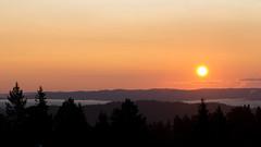 Sunrise (Ashild Andrea) Tags: blefjell mountain outdoors autumn fjell moss lichen heather lyng mose myr skog