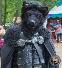 Michigan Renaissance Festival 2017 Revisited Sunday 30