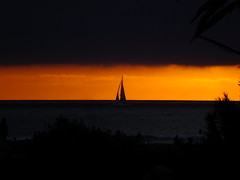 Just a dream and the wind to carry me And soon I will be free (Scott Douglas Worldwide) Tags: sky s sunrays smiling sun sunset ship sailing sandiego sailboat awesome perfect peaceful p paradise pretty keeper rays reverence unique unusual u cute custom g golden glorious godlike gold god glow great