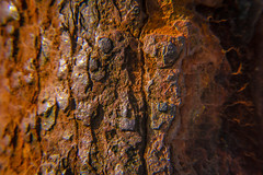 RUSTY BOLT AND NUT (RUSTY DAY #4) (Mark Photography 2017) Tags: angle close closeup color colour composition concept conceptual crafts deep detail exterior focus format frame framing freeze front gear genre horizontal landscape lens lenses light lighting macro macromondays mondays motion natural orange orientation outdoor pattern photo photography rust rusty setting shade style sun texture up viewartscraftsphotographysettingexterioroutdoorphotogenrestyletypemacromondaysmacromondaysgearlenslensesorientationlandscapemotionfreezeframelightingsunlightnaturalframingcompositiondetailcloseupcloseupformathorizontalfo
