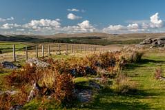 Fence at Gutter Tor, Dartmoor_Nik-1449 (Jean Fry) Tags: dartmoor dartmoornationalpark devon englanduk guttertor moorland nationalparks uk westcountry fences tors autumn bracken deadbracken
