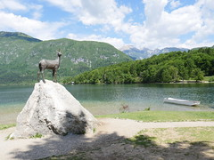 The beautiful Lake Bohinj, Slovenia