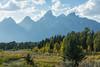 Grand Teton National Park (brittany_millan) Tags: grandtetons grandtetonnationalpark tetons