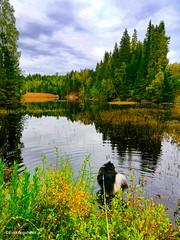 Lakes, water, ocean ❤ (evakongshavn) Tags: water waterscape lake landscapephotography landscape lakes landschaft landskap beautyinnature natur nature naturnature naturbilder naturephotography naturelovers naturaleza naturphotography