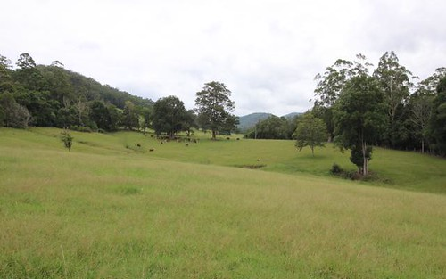 Lot 101 Pappinbarra Rd, Pappinbarra NSW
