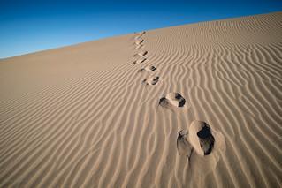 Mesquite Flat Dunes #1