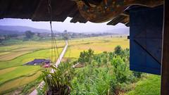 DSC02942 (Cao Viet Cuong) Tags: nậmkhắt yênbái vietnam vn