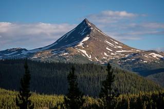 Needlepoint Mountain