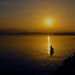 sunset fisher