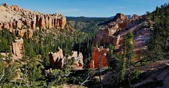 Bryce National Park (Susan Roehl) Tags: nationalparkstour2017 brycecanyonnationalpark utah usa paunsauguntplateau hoodoos uniquegeology rockformations distinctgeologicalstructures ebenezerbryce settledbymormons highestelevation9000feet 35835acres photographedfrominspirationpoint sueroehl panasonic lumixdmcgh4camera 12x35mmlens handheld landscape cliffside becameaparkin1923 canyon rock ngc