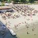 Strand Beach 10, Novi Sad