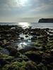 Freshwater (deadmanjones) Tags: freshwaterbay seaside seashore beach