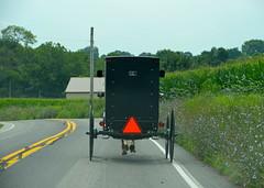 Behind the buggy (afagen) Tags: pennsylvania lancastercounty amishcountry groffdaleconferencemennonitechurch wengermennonite oldordermennonite mennonite horseandbuggy buggy