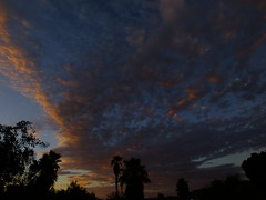 Awesome clouds (Scott Douglas Worldwide) Tags: az arizona awesome america amature american atlasta adorable awsome antique sky s sunrays smiling sun sunset sunrise seagull keeper k lakewobegon lake pink perfect p peaceful paradise palmtree palm palms palmtress pretty