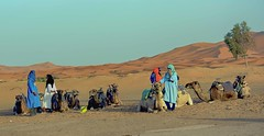 Tuaregs in Merzouga (maios) Tags: tuaregsinmerzouga tuaregs merzouga morocco men camels sanddunes sand dunes maios beduin arabia twareg touareg berber nomadic traditionall nómadas africa maroc