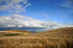 The road home (charlottehbest) Tags: charlottehbest wales april uk easter exploring elanvalley elan rhayader
