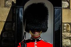 Retrato Soldado Torre de Londres 2 (Garimba Rekords) Tags: londres london england inglaterra uk soldado torredelondres retrato