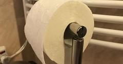"""Das Klopapier / Die Klorolle. Oder: Das Toilettenpapier. • <a style=""""font-size:0.8em;"""" href=""""http://www.flickr.com/photos/42554185@N00/36177711823/"""" target=""""_blank"""">View on Flickr</a>"""