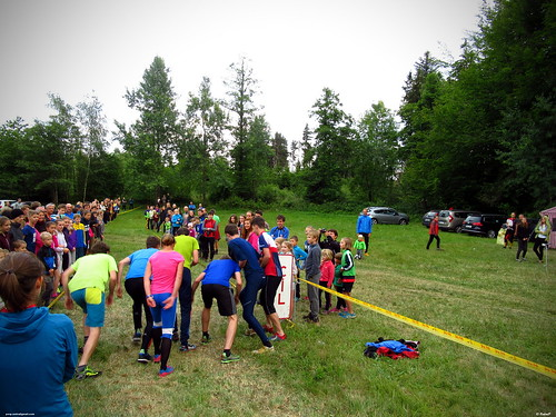 hsh_cup_2017_07_14_18_54_54_04