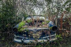 Kolbenfresser (Andy Schwetz ( andyschwetz,de)) Tags: urbex abandoned car tree moss woods lost beautyindecay patina canoneos6d canon1635f40 lostplaces rusty andyschwetz fotografiemünchen grün nature rostig