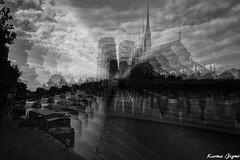 Rêveries VI (karmajigme) Tags: notredame paris monument architecture monochrome travel dreams blackandwhite noiretblanc nikon