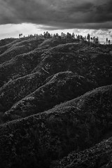 Dreams of Uppsala (Josh Patterson Photo) Tags: anf angelescrest angelesnationalforest losangeles socal southerncalifornia mountains mountain pine pines slopes blackandwhite monochrome california usfs cloud landscape rugged