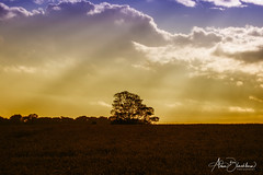 DSC_2506 (Fanta258) Tags: sunset breath taking landscapes breathtakinglandscapes