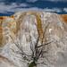 Orange Spring Mound, Mammoth Hot Springs (Yellowstone NP)
