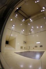 センター試験 画像12