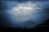Blue Mood (Andrea Kollo Photography) Tags: andreakollo andreakollophotography nature naturephotography natureartprints natureart greatoutdoors fineart fineartprints fineartphotograph graphicart flickr landscape sceniccountryside sceniclandscape clouds cloudysky