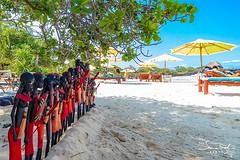 Maasai warriors at the beach