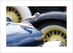 Dodge Brothers (DJ Wolfman) Tags: dodge classic classiccars vintage antique blue hoodornament ram oldcar yellow olympus olympusomd em1markii 12100mmf4zuiko zuiko zd micro43