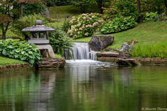 Petit endroit ... (musette thierry) Tags: jjardin jardinjaponais jardinjaponaishasselt belgique paysage parc belgium europe musette thierry d600 hasselt limbourg