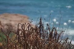 Bokeh a orillas del mar (joseange) Tags: bokeh see meyeroptikmtrioplan