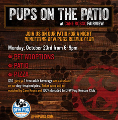 Pups on the Patio 10-23-2017 CRF DFW Pug Rescue Club (canerossotx) Tags: pups patio pupsonthepatio graphic flier