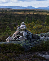 Blefjell (Ashild Andrea) Tags: blefjell mountain outdoors autumn fjell moss lichen heather lyng mose myr skog