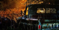 Abandoned Truck In Morning Light (Tim @ Photovisions) Tags: nebraska truck chev sun dawn chevolet sunrise abandoned sunset