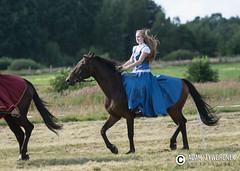 "foto adam zyworonek-9143 • <a style=""font-size:0.8em;"" href=""http://www.flickr.com/photos/146179823@N02/36707385162/"" target=""_blank"">View on Flickr</a>"